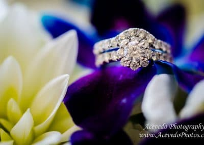 Crown Plaza Ocean Front Melbourne Florida Wedding Ring Shot