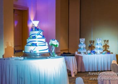 World Center Marriott Orlando Florida Wedding Cake