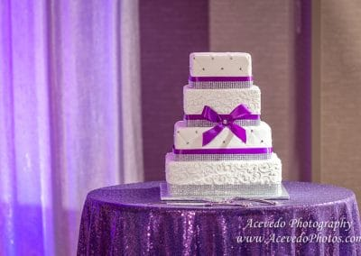Cocoa Beach Florida Marriott Wedding Cake